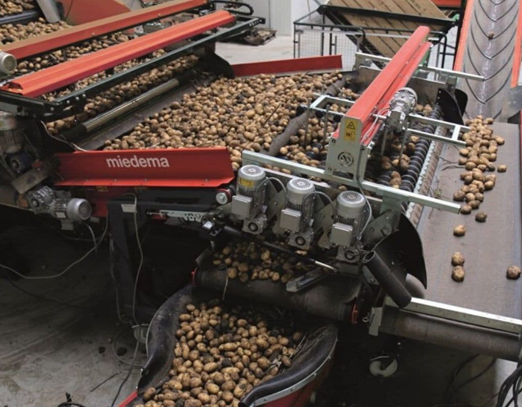 Dewulf Web and Flexible Grading Machines